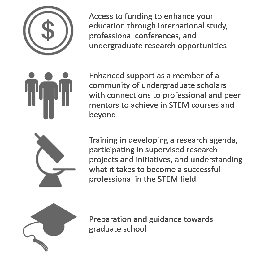 Access to funding, enhanced support, research training, and preparation towards graduate school.